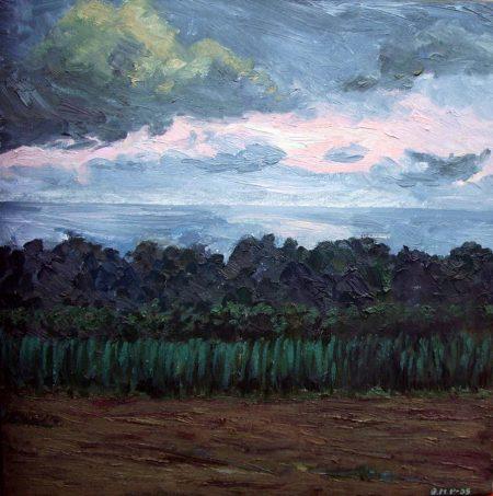 Horizonte CuadroDo La noche - OOOleo sobre lienzo - 40x40cm