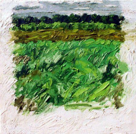 CuadroDo La huerta - OOOleo sobre lienzo - 27x27cm
