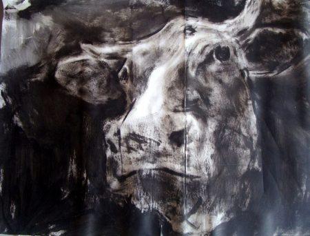 2007 Vaca