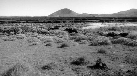 Llano con montannna