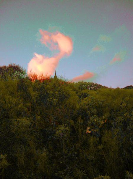 Encuentros en el paisaje 2 - Impresiooon digital - 27x20cm